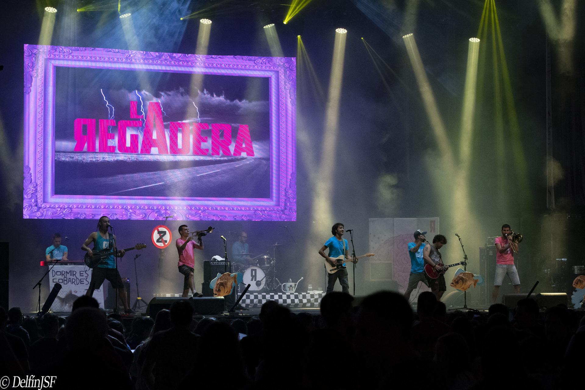 SKA-P #Pilares2019, DelfínJSF