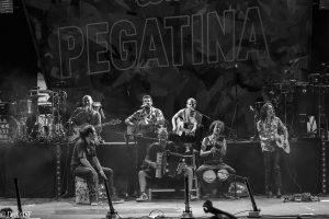 LA PEGATINA #TUDELA2019, DelfínJSF