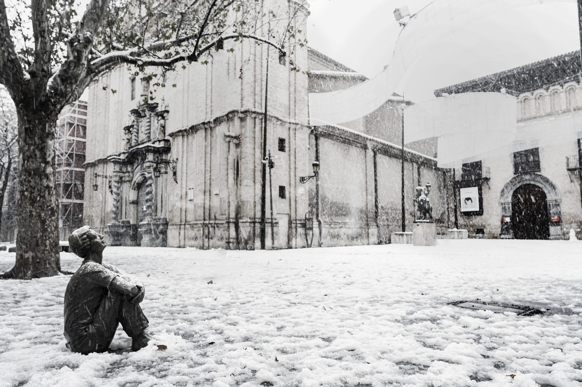 TEMPORAL FILOMENA #ZARAGOZA, DelfínJSF